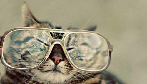 عکس های پربیننده طنز و جالب اینترنت