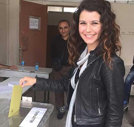 اخبار,اخبار فرهنگی ,انتخابات پارلمانی ترکیه