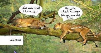 عکسهای خنده دار خفن و جالب فیسبوکی شهریور 94