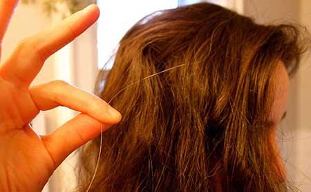 کندتر کردن روند سفید شدن موها