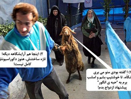کاریکاتور عید قربان, عکس خنده دار عید قربان