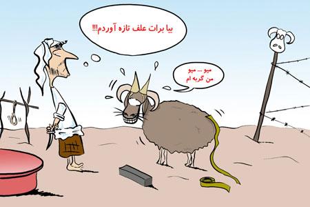 عکس عید قربان, مطالب طنز و خنده دار