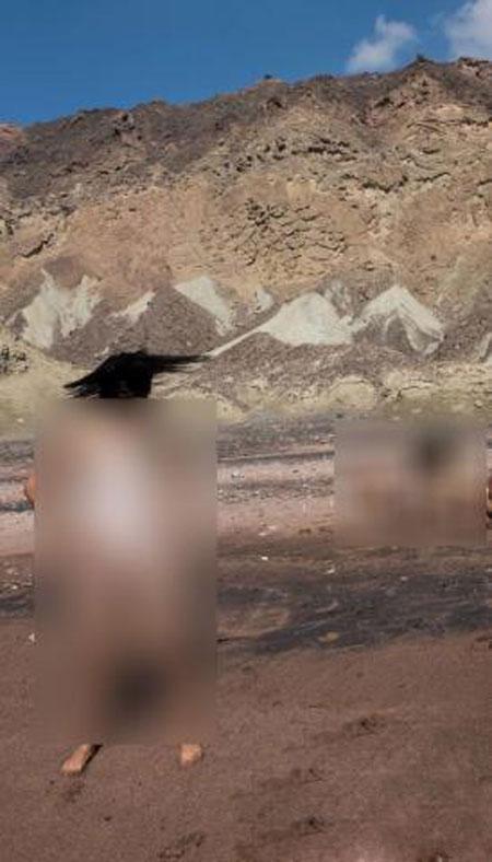 جنجال شنا کردن مختلط زنان و مردان برهنه در ایران +عکس