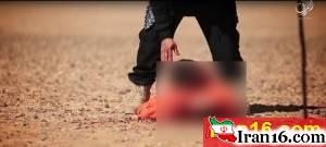 به نیزه کردن سرهای بریده توسط داعش + تصاویر 16+