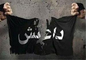۱۰ حقیقت شوک آور درباره داعش