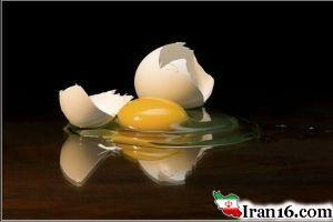 همه خواص و مضرات تخم مرغ