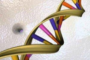 روشی علمی برای تعیین سن -چند سال عمر میکنید؟