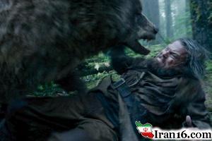 جنگ مرد ژاپنی با خرس با استفاده از حرکات کاراته + تصاویر