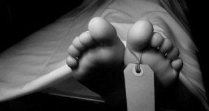 جسد دیوید همیلتون عکاس انگلیسی که در زمینه مد عکاسی میکرد در منزلش در پاریس پیدا شد.