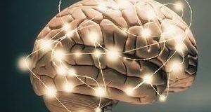 8 تاثیر رابطه جنسی بر مغز انسان