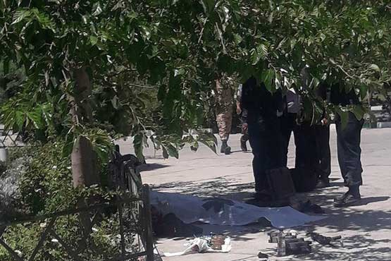 تصویر جدید از عامل حادثه تروریستی حرم امام (+16)