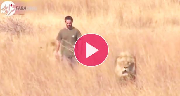 زندگی مردی با شیرها