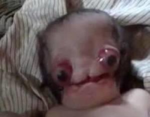 تولد ترسناک ترین نوزاد جهان + فیلم و عکس 18+