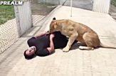 با محبت حتی وحشی ترین حیوانات هم رامِت میشن