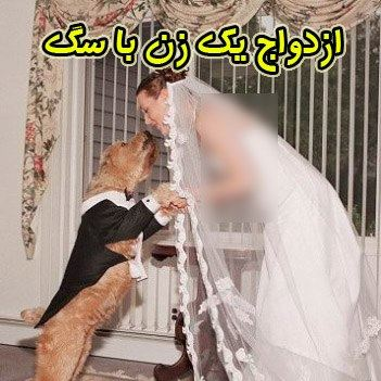 ازدواج انسان ها با حیوانات (3)