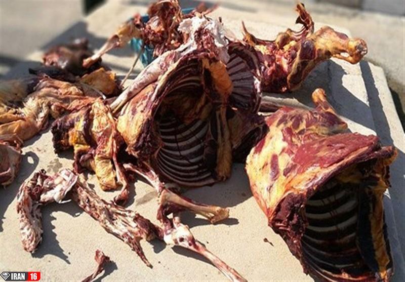 اصفهان| قصاب و توزیعکننده گوشت الاغ در فلاورجان شناسایی و دستگیر شدند