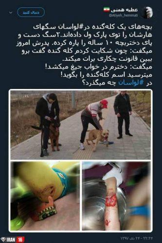 سگ های هار یک آقازاده در لواسان! + عکس