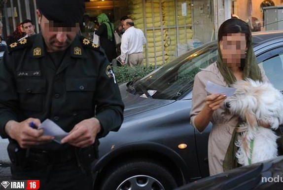شغل سگی در تهران با دستمزد نجومی ! + عکس