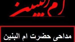 مداحی حضرت ام البنین دانلود نوحه ام البنین(س) سید مجید بنی فاطمه