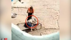 شکنجه مادرشوهر سالخورده توسط عروس جوان! +فیلم