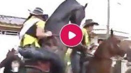 جفتگیری اسب های هنگام سواری گرفتن از آنها توسط دخترها + فیلم