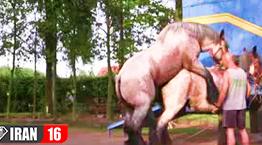کلیپ جفت گیری اسب های نمایشگاهی