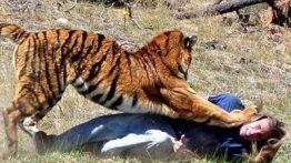 حمله حیوانات به انسان