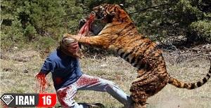 تصاویری از حملات مرگبار حیوانات به انسان ها