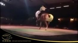 رقصیدن اسب