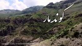 گوند مار ایرانی