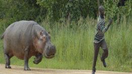 حمله حیوانات به انسان قسمت دوم