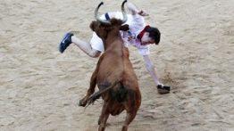 حمله گاو وحشی به مردم