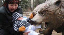 حمله حیوانات وحشی به انسان ها