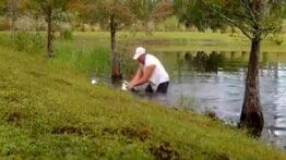 نجات دادن توله سگ از دهان تمساح توسط یک مرد شجاع