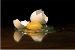 تمامی خواص و مضرات تخم مرغ